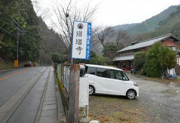京都貓貓寺