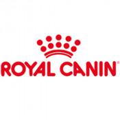 Royal Canin x Catit 限量版貓按摩玩具
