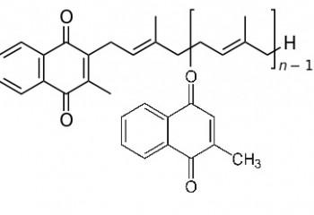食貓屎有助對抗新冠狀病毒 COVID-19 ?