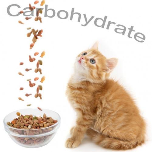 低碳水化合物乾糧