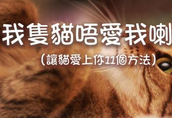 我隻貓唔愛我喇